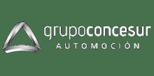 Grupo Concesur